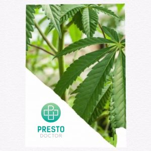 Nevada cannabis legalization