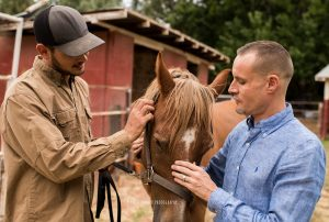 ian pedersen source bcd with horse