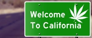 California Cannabis Business Licensing The J.Whitney Group for Cannabis Magazine
