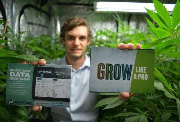 David Standard Grow Buddy app software cannabis marijuana grow GIY tips advice interview entrepreneur cashinbis 4