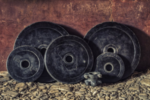 bodybuilding weights