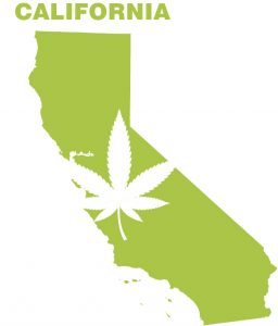 California Cannabis Business License info by The J.Whitney Group for Cannabis Magazine