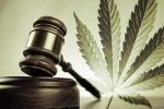 The case for federal cannabis legalization Cannabis magazine