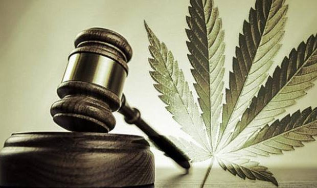 The case for federal cannabis legalization Cannabis magazine