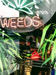 Canadian Cannabis Store Elli Ho