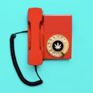 Cannect Hospitality cannabis social use company