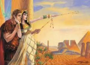 Cleopatra cannabis