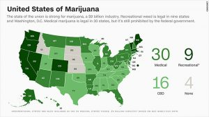 Marijuana Laws in USA (Photo Credit: Green Lotus Hemp)