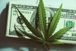cannabis_investing