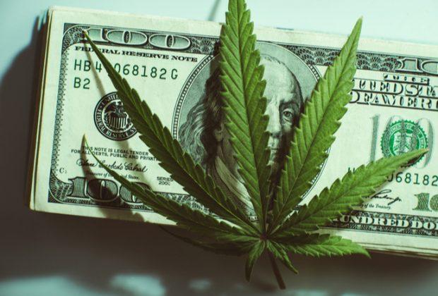 cannabis investing