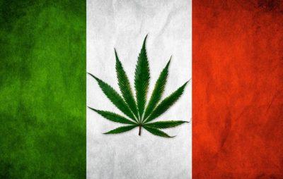 cannabis italy