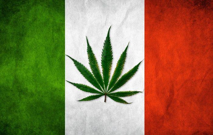 cannabis_italy