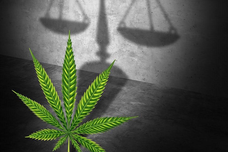 Cannabis lawyers