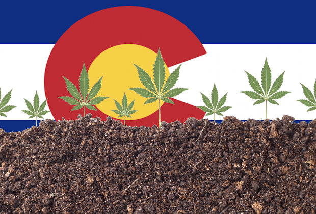 Colorado Cannabis Energy Program