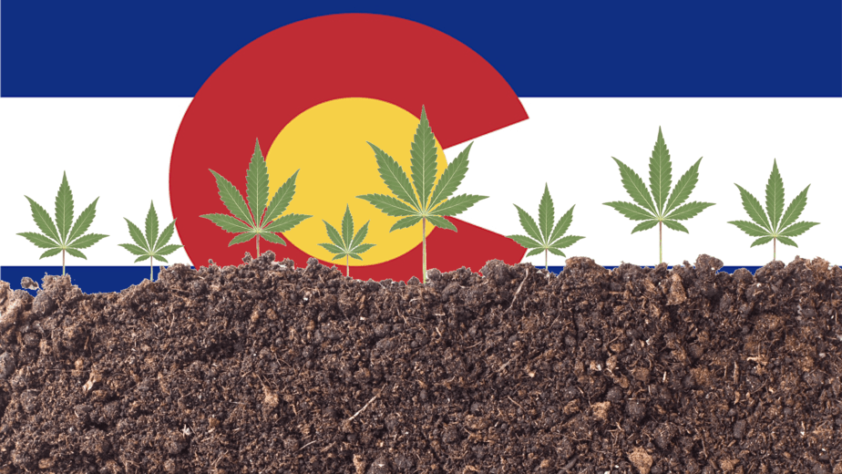 Colorado Cannabis Energy Policy