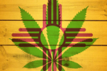 New Mexico Cannabis