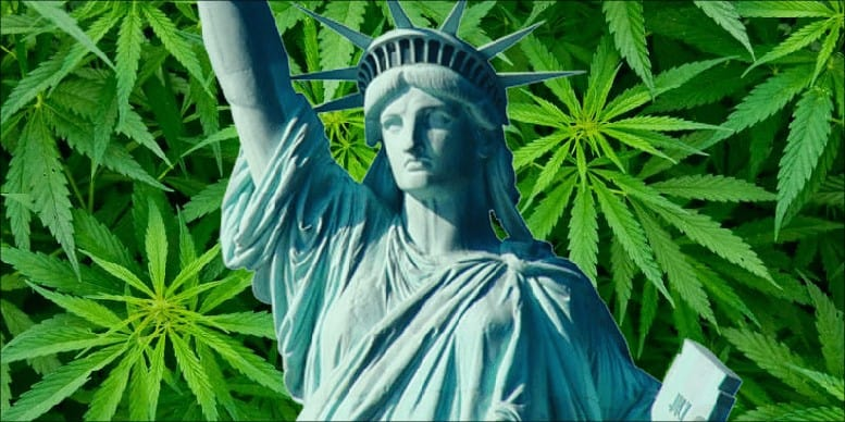 New York Cannabis
