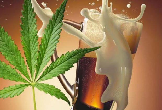 cannabis and beer sales