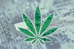 cannabis technology2