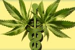 medical associations lobby for cannabis