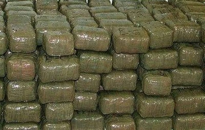 Tons of Weed