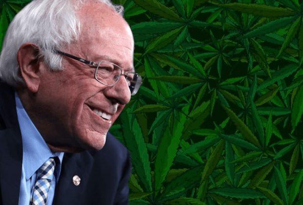 Bernie Sanders Cannabis Pledge