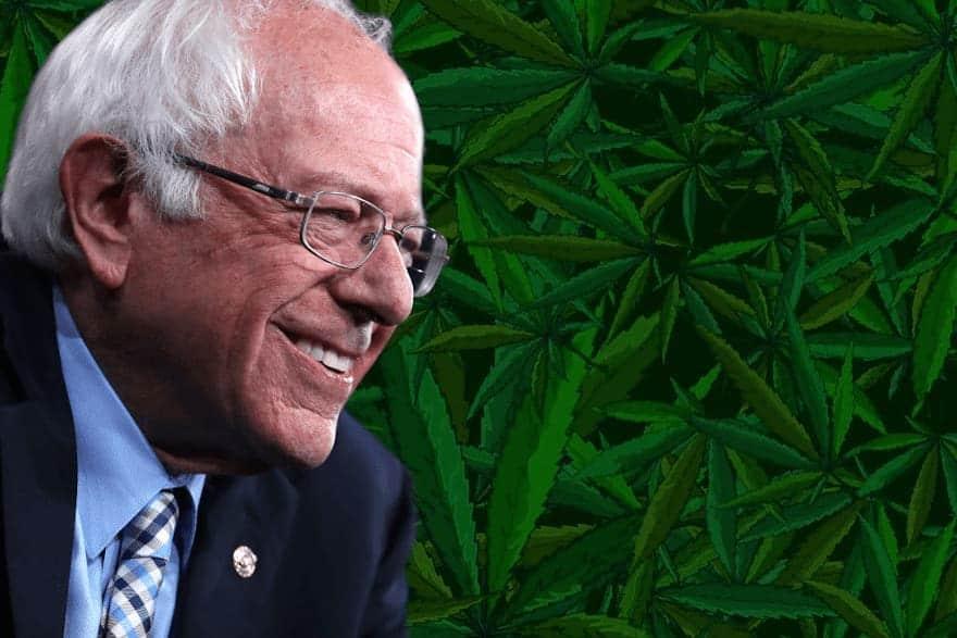 Bernie Sanders for Cannabis Legalization