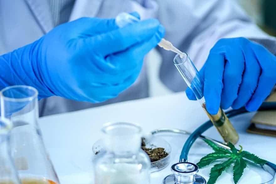 CU Boulder Cannabis Research