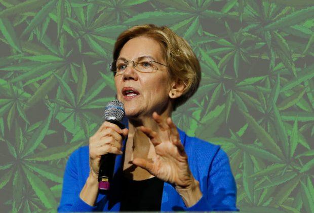 Elizabeth Warren Cannabis Plan
