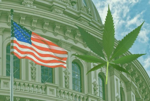 Trump Budget Overturn Cannabis
