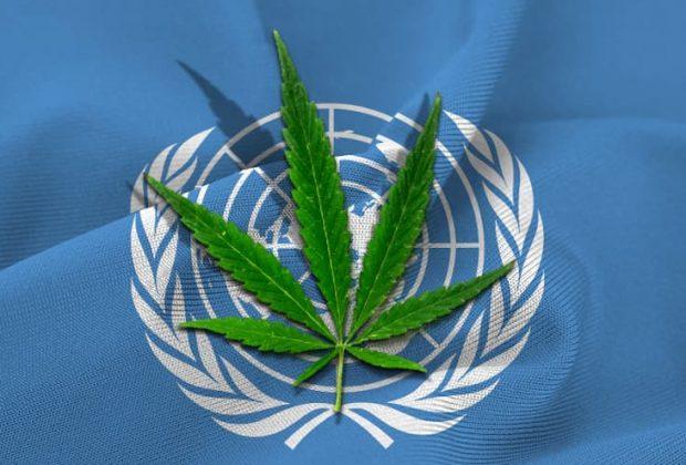 UN Cannabis Policy