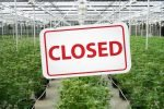 Canopy Growth Closes Greenhouses