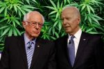 Sanders vs Biden on Cannabis