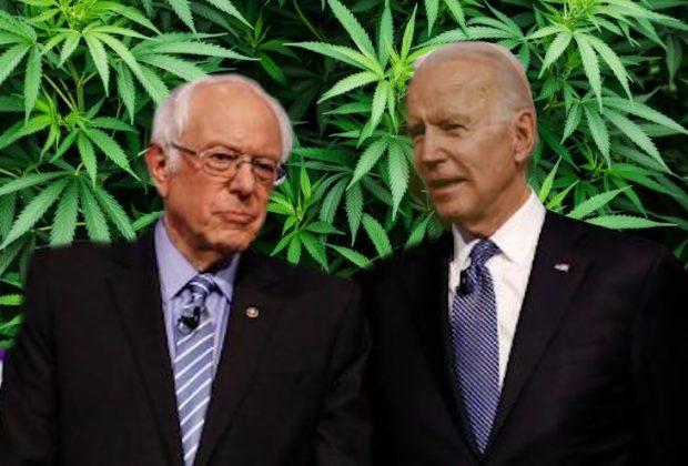 Sanders vs Biden on Cannabis