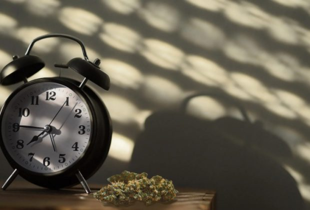 Cannabis and Chronic Insomnia