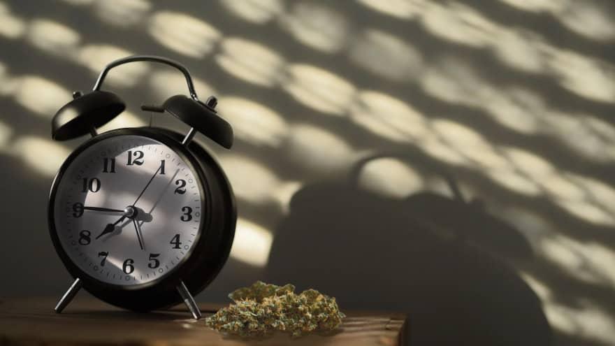 Cannabis and Chronic Insomnia