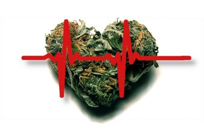 Cannabis and Heart Health