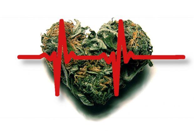 Cannabis and Heart Health