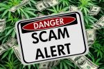 SEC Warns of Cannabis Industry Fraud