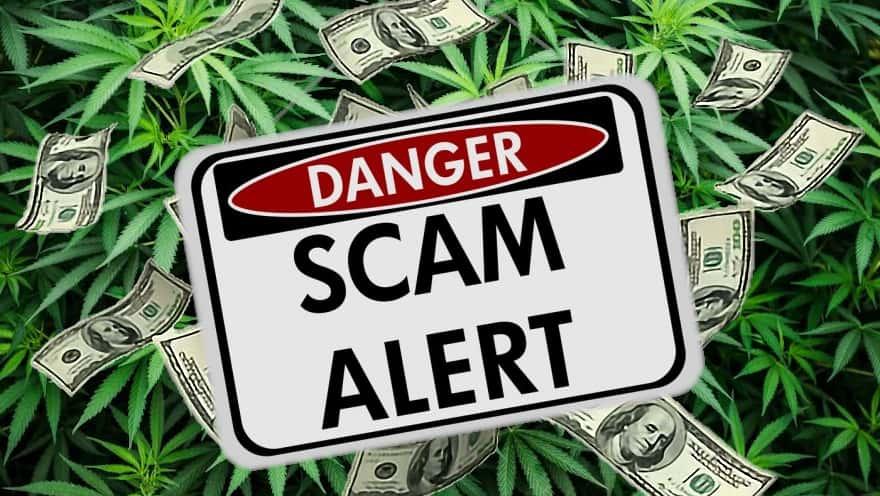 SEC Warns of Cannabis Industry Fraud