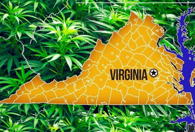 Virginia Cannabis Law