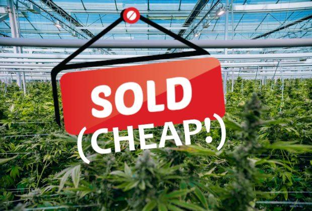 Auroroa Cannabis Sells Large Greenhouse