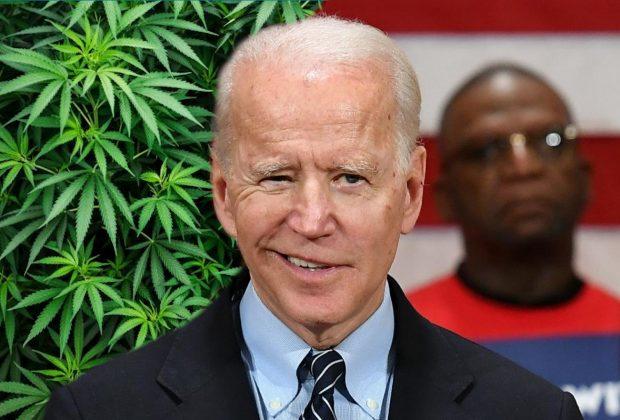 Biden on Cannabis Reform