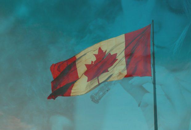 Canadian Illicit Cannabis Market