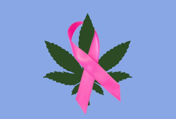 Cannabis for Breast Cancer Symptoms
