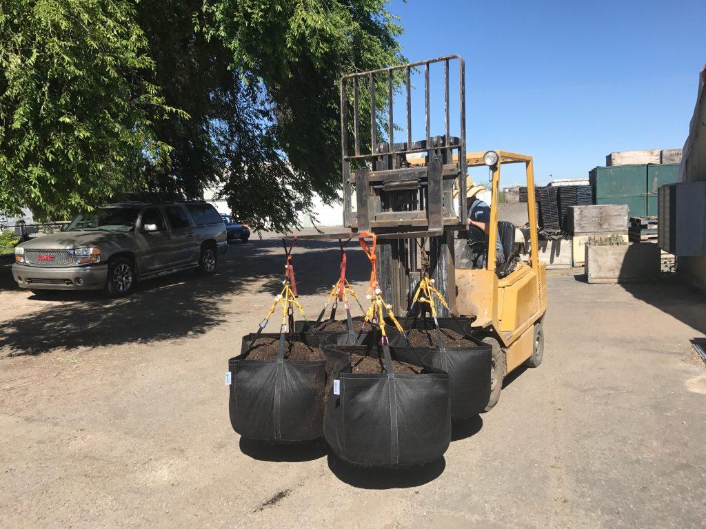 LargeGeoPots on Forklift